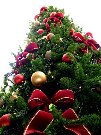 Juegos y villancicos para niños en Navidad